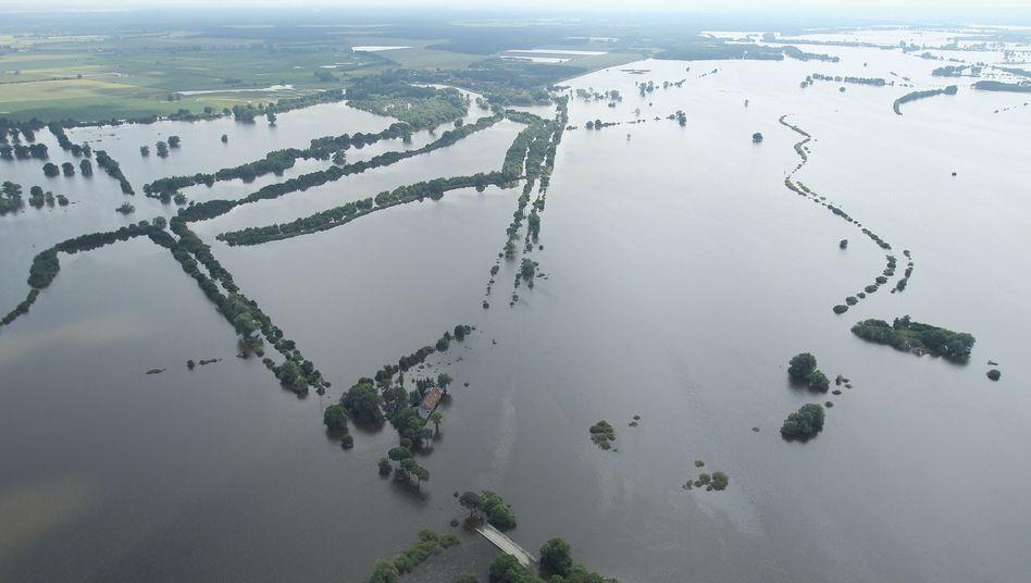 Überflutung bei Fischbeck: 200 Quadratkilometer unter Wasser