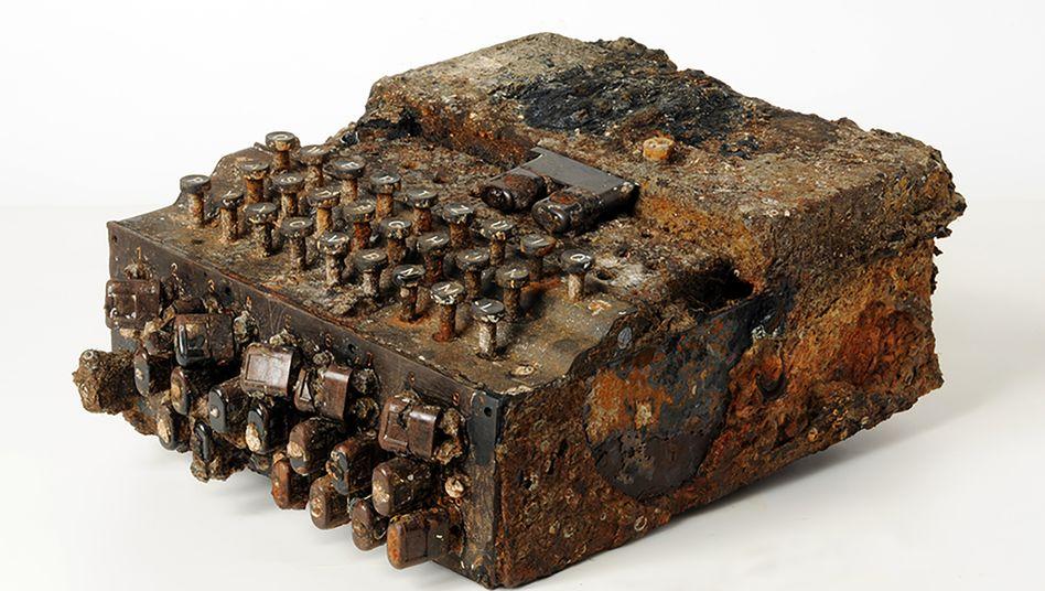 Eine der geborgenen Enigmas nach einer groben Reinigung – nun muss das Fundstück konserviert werden, damit das Metall nicht zerfällt