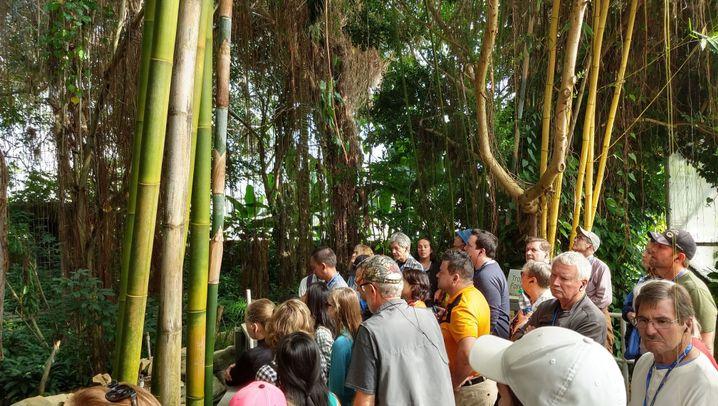 """""""Biosphere 2"""": Ein Raumschiff für Menschen"""