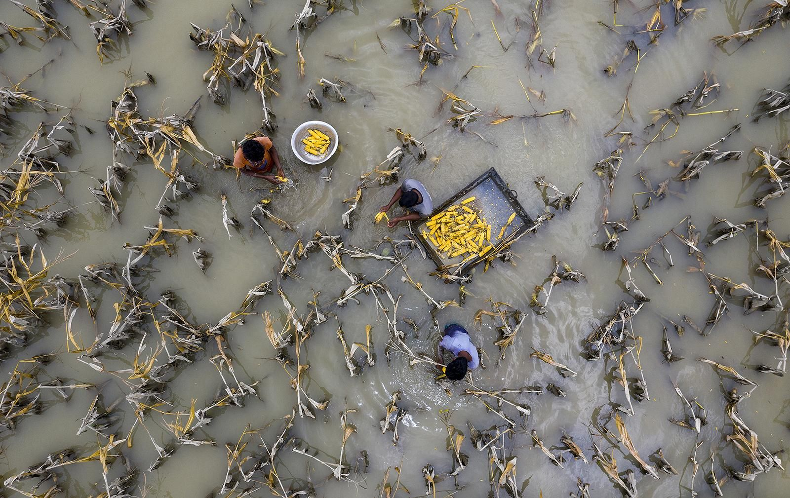 Flood-water-has-damaged-crops_Azim-Khan-Ronnie_Aerial-Photography-Awards-2021_preview