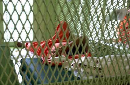 Guantanamo: Die Häftlinge sind in Einzelzellen ohne Kontakt zur Außenwelt untergebracht