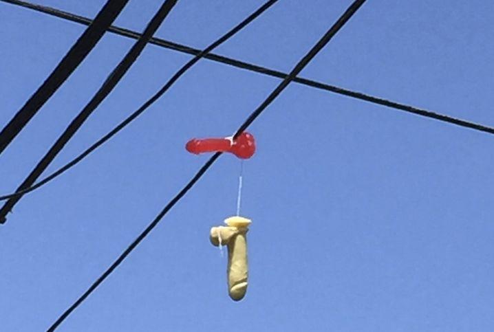 Straßenbild in Portland: Da baumelt doch was