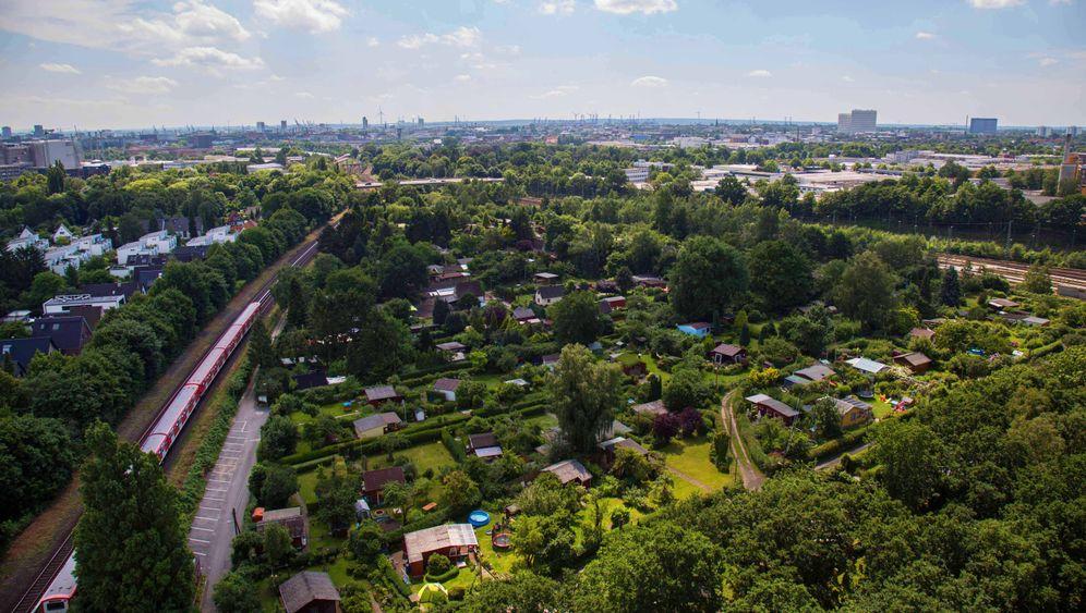Kleingärtner in Hamburg: Ihre Grünflächen müssen weichen