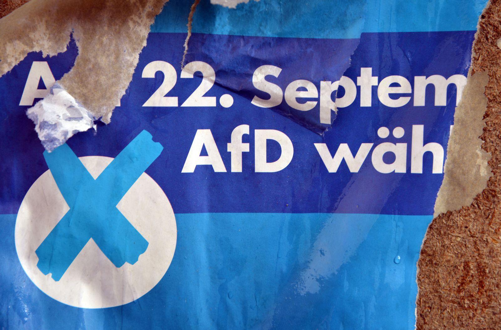Wahlplakat der AfD 2013