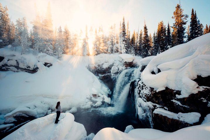 Yellowstone-Nationalpark: Im Sommer überlaufen, im Winter Ruhe im Schnee