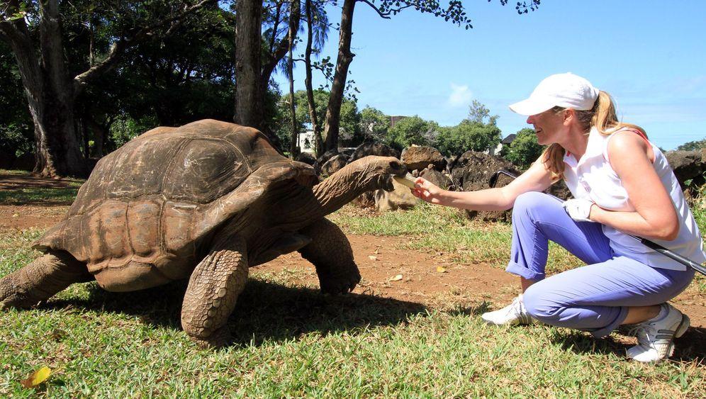 Mauritius: Golf-Paradies auf der Insel