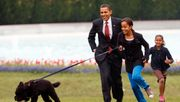 Obamas trauern um Familienhund Bo