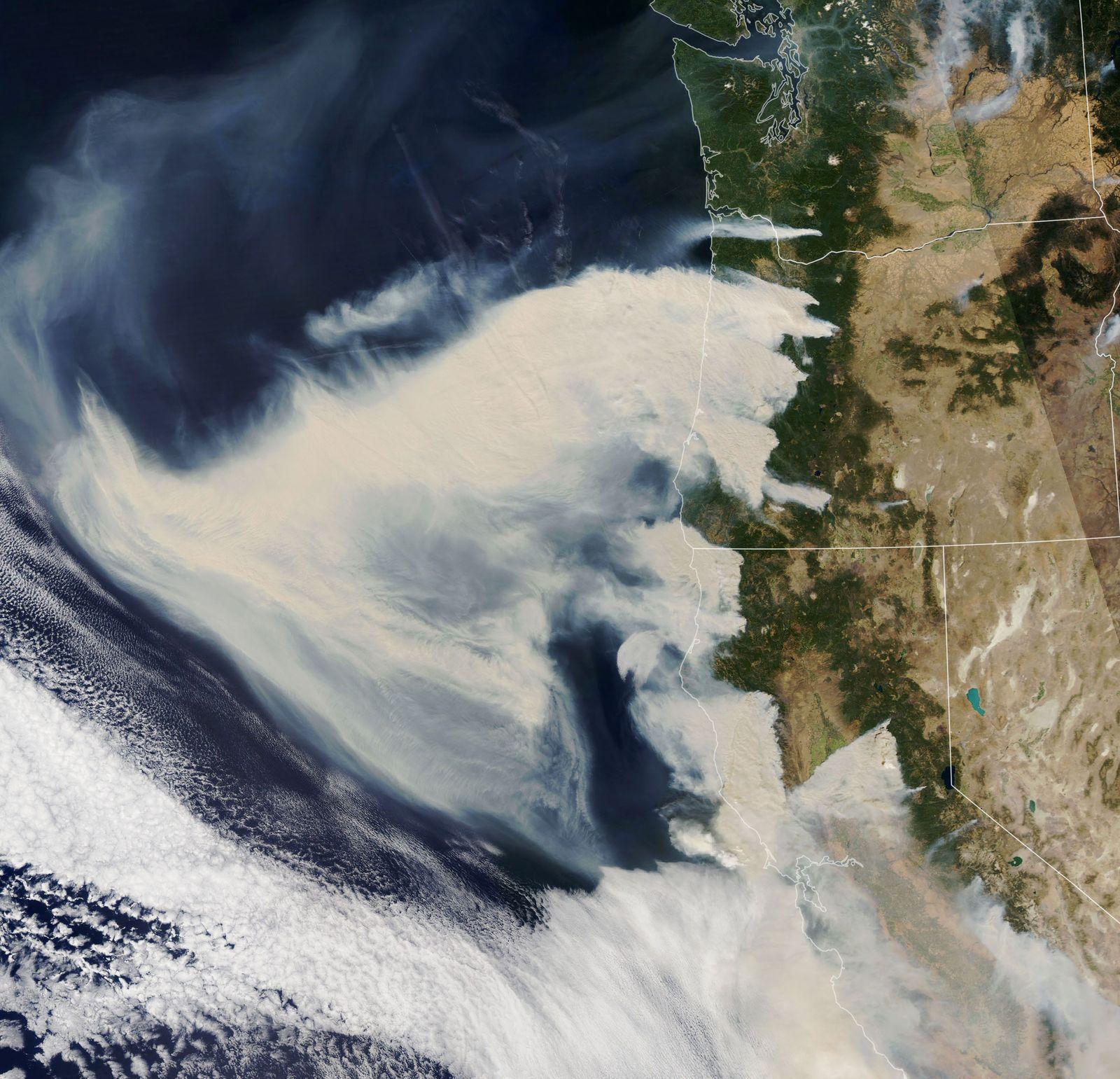 Satelittenbilder/ Waldbrände