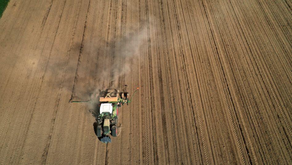 """Landwirt bei der Aussaat: """"Die Böden brauchen nun Regen"""""""