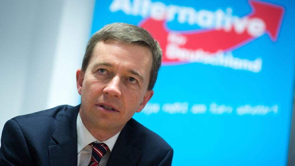 Bernd Lucke: Verlierer im Machtkampf