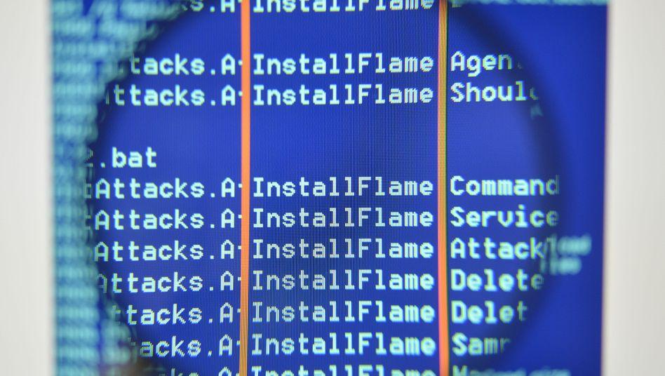Flame-Softwarecode: Neuer Verwandter ist kleiner und stärker spezialisiert