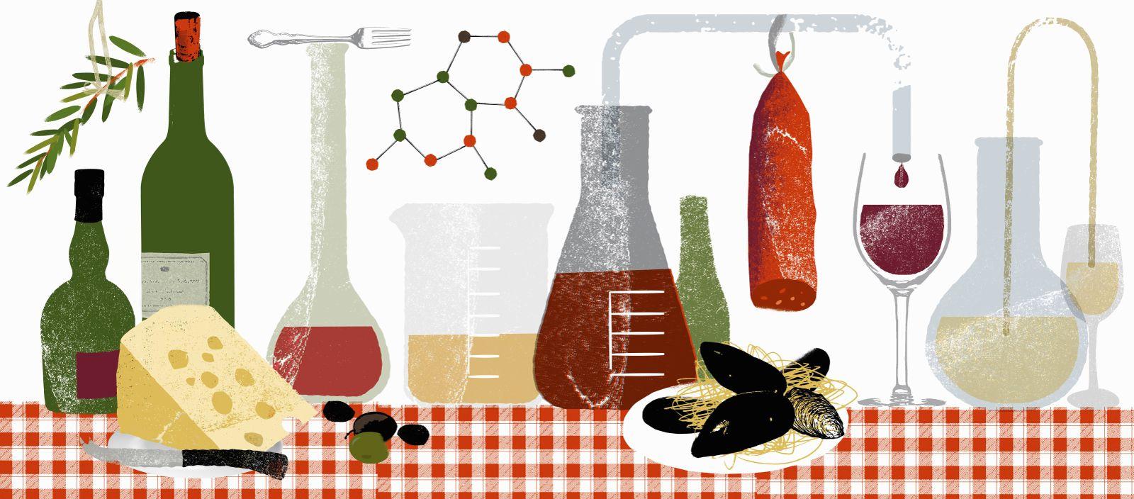 EINMALIGE VERWENDUNG Lebensmittel/ Experimente