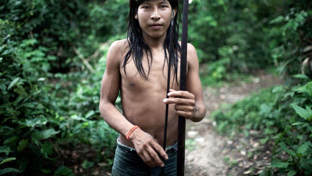 Awá in Brasilien: Jäger werden zu Gejagten