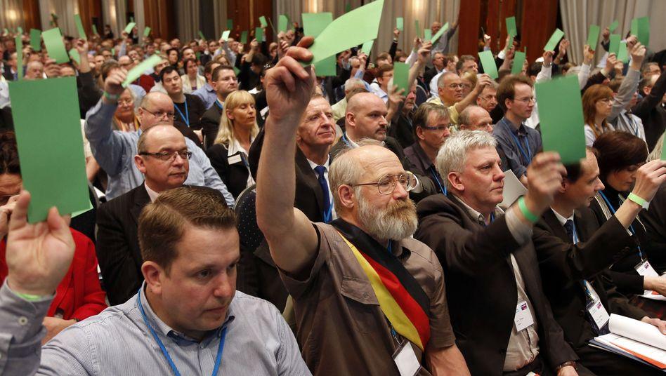 Alternative für Deutschland: Protestpartei startet Anti-Euro-Wahlkampf