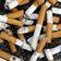 Schon vier bis sechs Zigaretten täglich schaden enorm