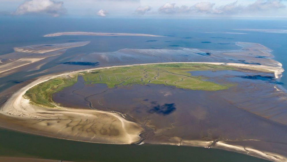 Trischen: Die schnellste Insel der Welt