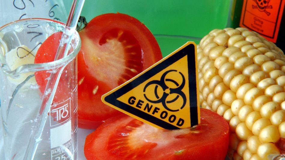 Gemüse mit symbolischem Genfood-Schild: Kritik an Lobby-Einfluss auf Prüfungen