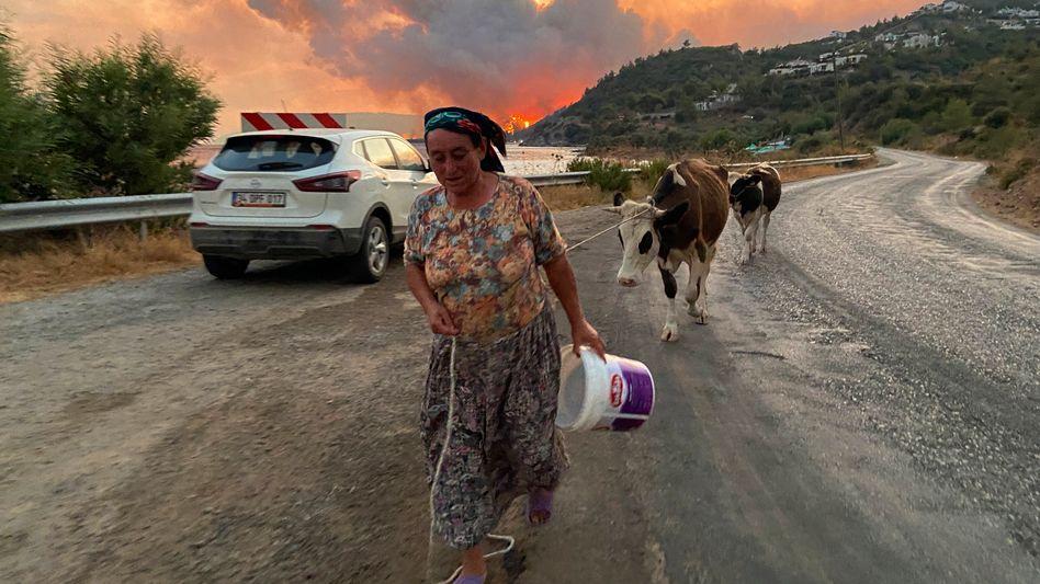 Menschen fliehen vor den sich ausbreitenden Feuern – so wie hier im türkischen Bodrum