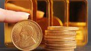 AfD hat sieben Millionen Euro geerbt