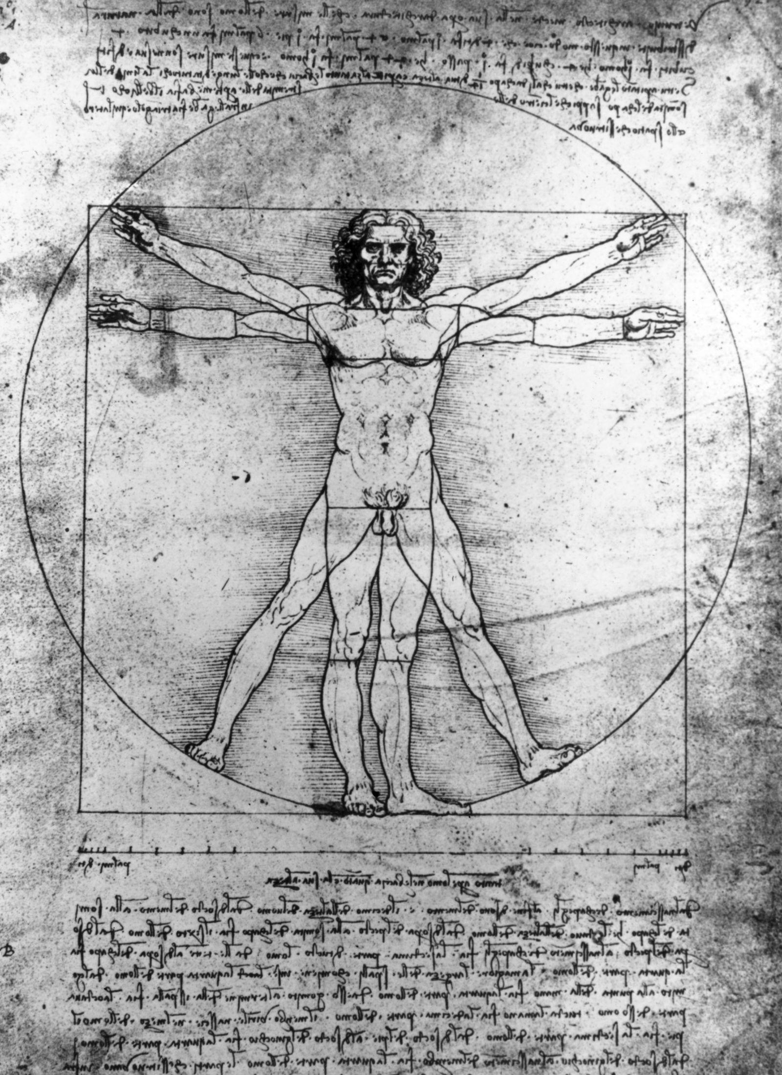 Da Vinci / Zeichnung perfekte Proportionen