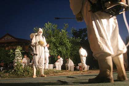Vorsichtsmaßnahme: Als die Vogelgrippe in Bukarest gefunden wurde, stellten die Behörden ein Stadtviertel unter Quarantäne