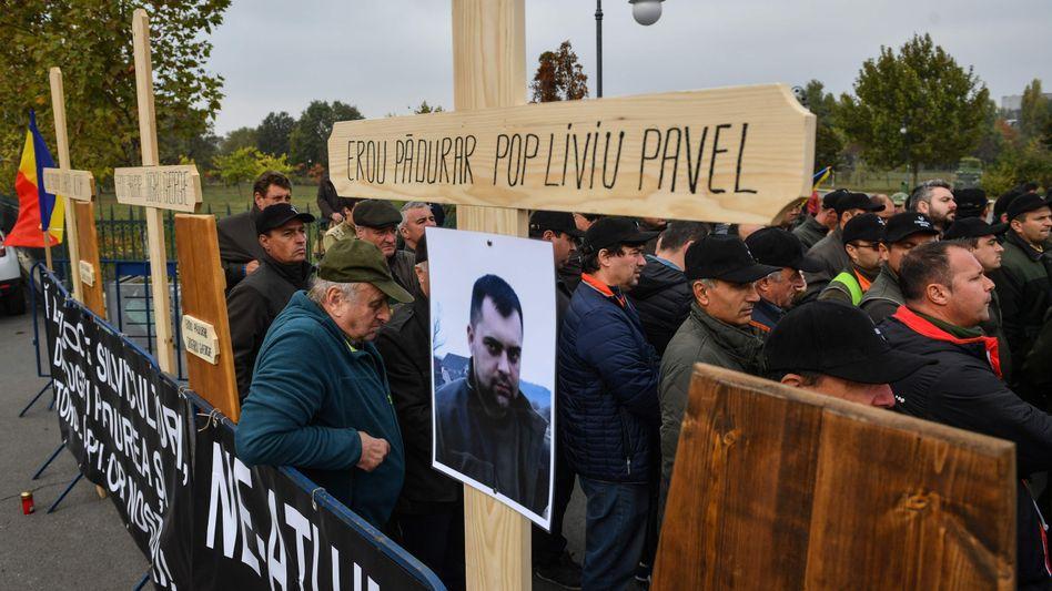Protest in Bukarest: Viele Förster und Waldarbeiter in Rumänien fürchten um ihr Leben