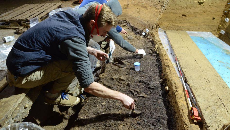 Höhle voller Knochen: Mehr als 10.000 Knochensplitter fanden Archäologen in der Höhle Bacho Kiro