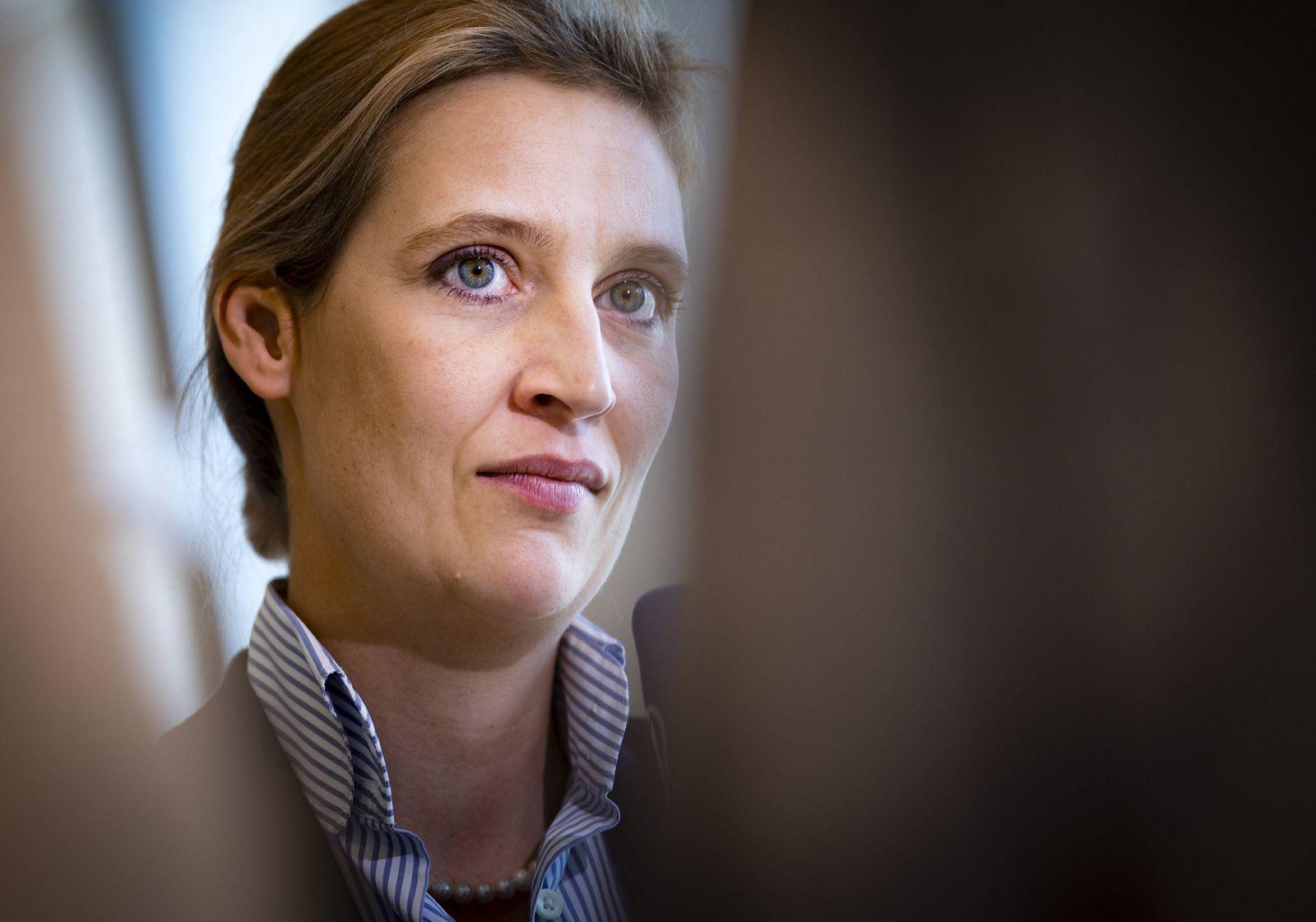 EINMALIGE VERWENDUNG Alice Weidel