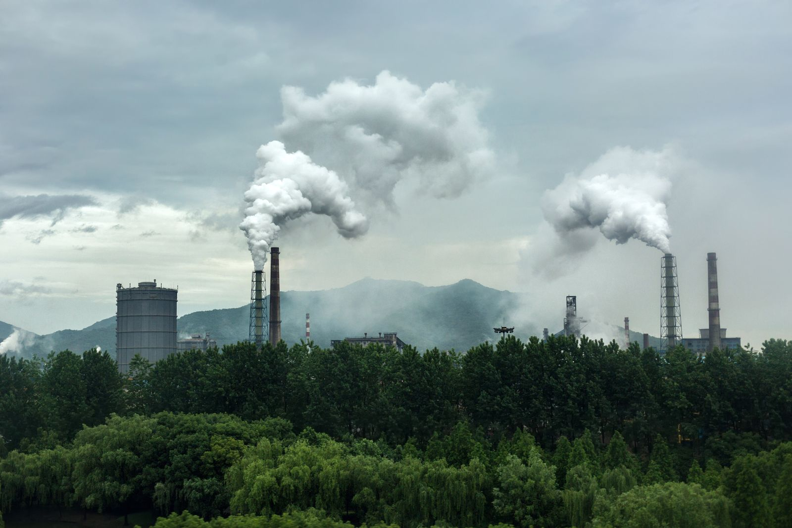 EINMALIGE VERWENDUNG Klima