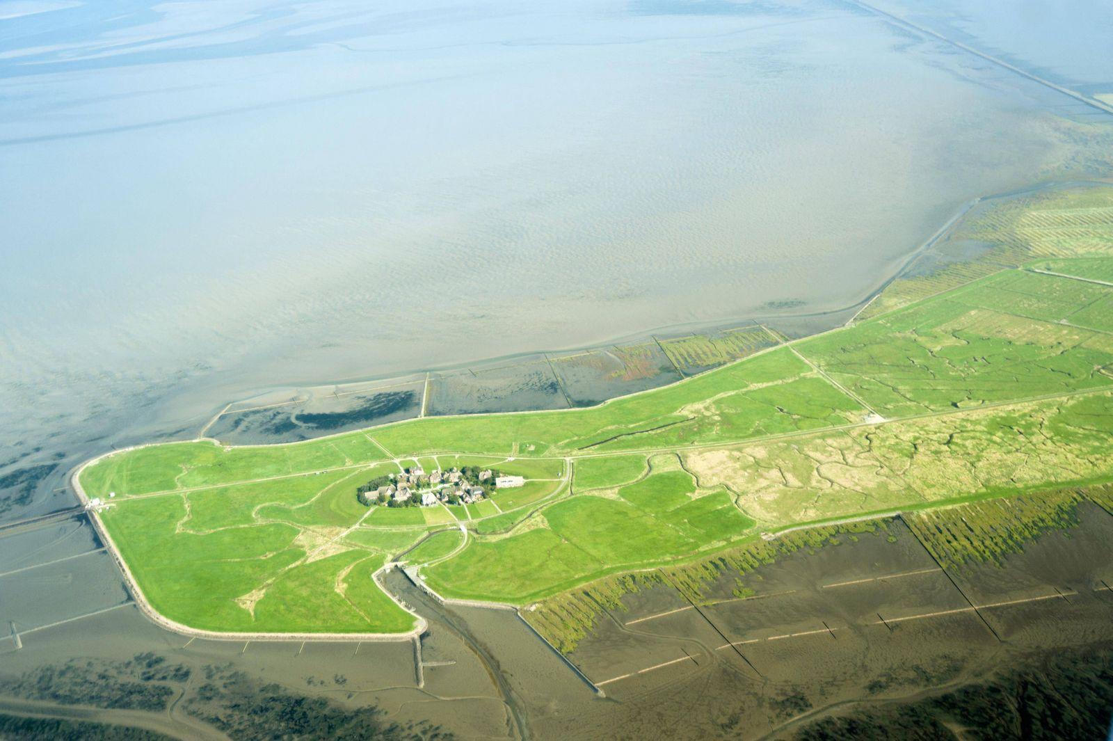 Luftbild vom Schleswig Holsteinischen Nationalpark Wattenmeer bei Hallig Oland PUBLICATIONxINxGERxSU