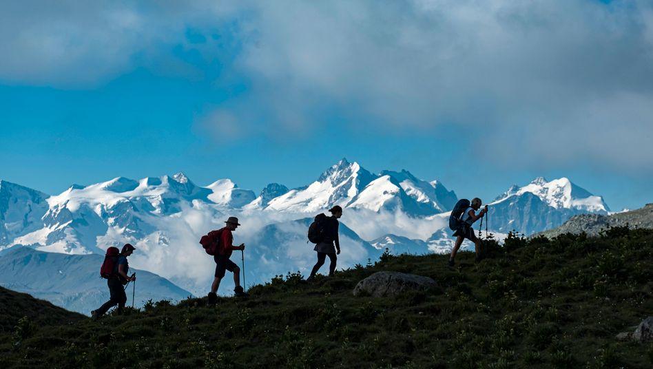 Wandergruppe in den Alpen (Symbolfoto): Der Deutsche Alpenverein registrierte im vergangenen Jahr 54 tote Bergsportler