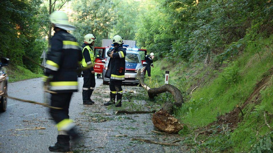 Aufräumarbeiten: Feuerwehrleute sind bei Sitzenberg-Reidling im Einsatz (Foto vom 16. August)