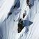 »Für ein paar Stunden im Schnee riskieren die ihr Leben«