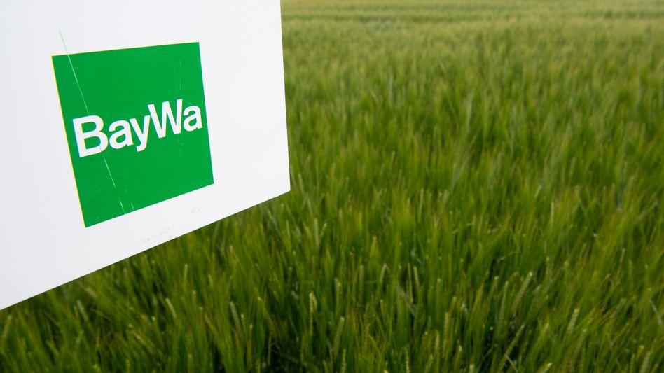 BayWa-Logo (Archivbild): Der Konzern verlangt Schadensersatz vom Bundeskartellamt