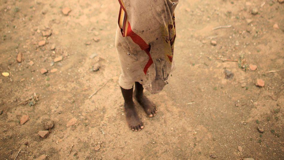 Junge in Kenia: Viele Kinder müssen arbeiten, statt zur Schule zu gehen