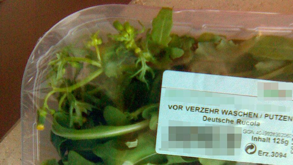 Verdächtige Pflanze in Salatschale: Mit diesem Bild hat der Finder nach eigenen Angaben seine Entdeckung dokumentiert