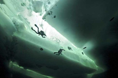 Divers at the North Pole: Is Polar ice melting for good or is it just in a constant state of flux?