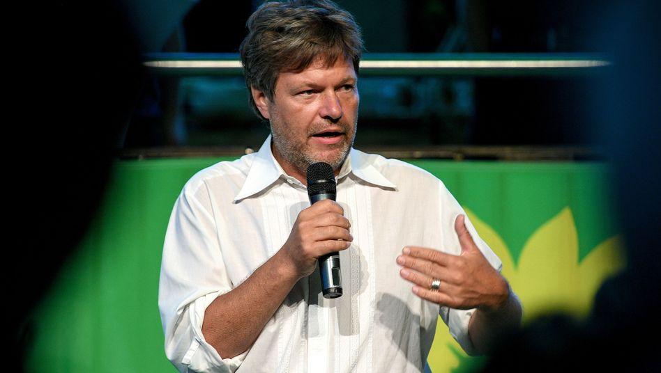 Grünen-Co-Parteichef Robert Habeck