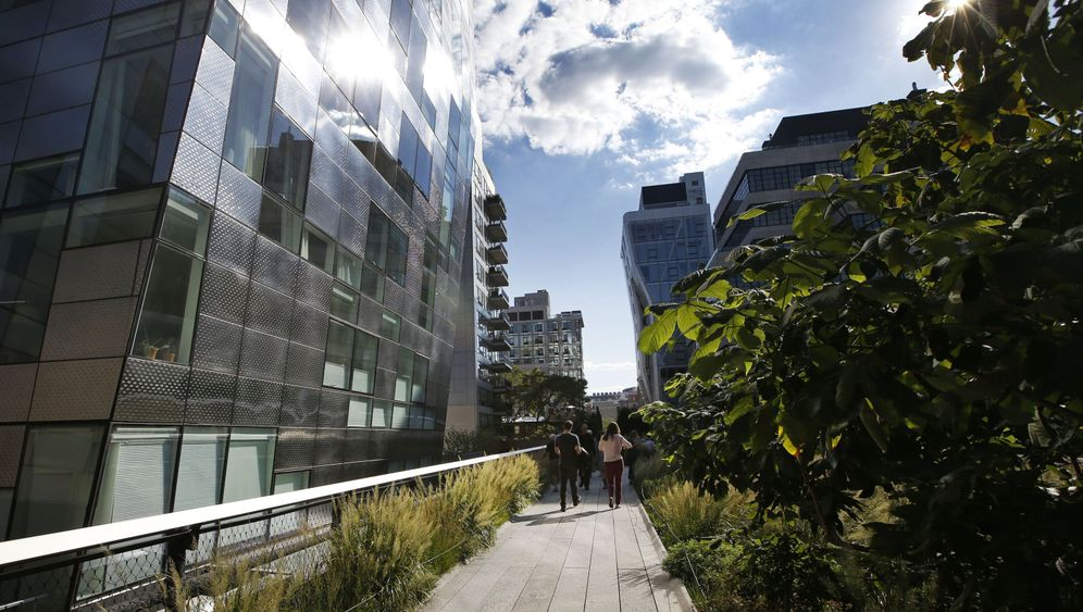 High Line in New York: Grün, hoch, herrlich