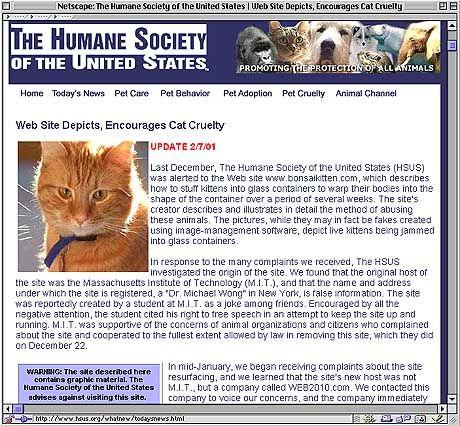 """Aufreger des Monats: Die Humane Society leitet die Kampagne gegen die """"Katzenquäler"""""""