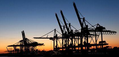 Kräne im Hamburger Hafen: Wirtschaftskrise hat fast alle Branchen erreicht