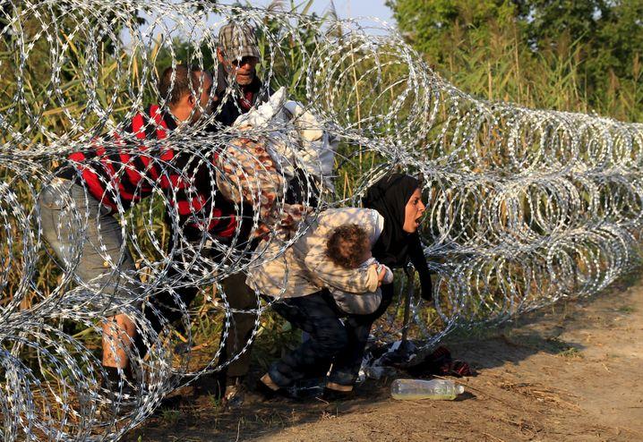 Syrische Flüchtlinge in ungarischem Grenzzaun: Streit um einen NS-Vergleich