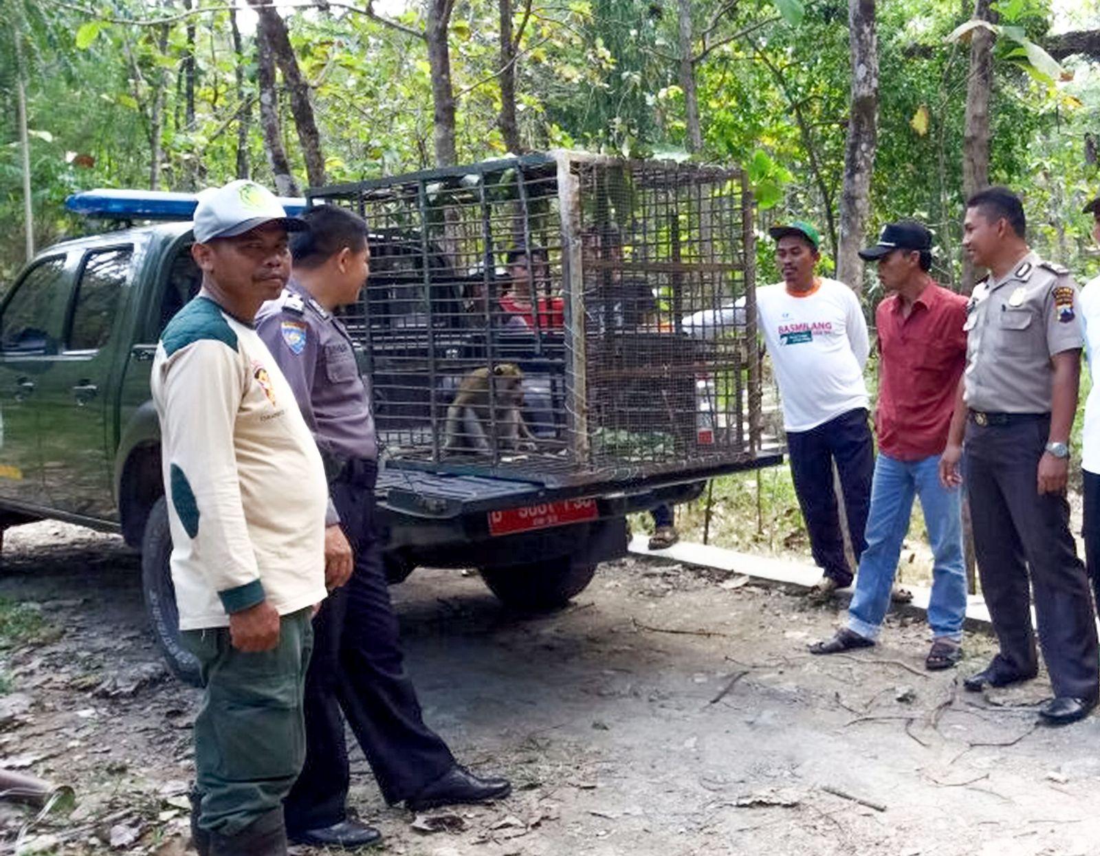 INDONESIA-HUNTING-ANIMAL