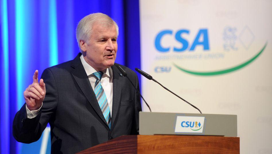 """CSU-Chef Seehofer: """"Aber ich wüsste auch, was ich zu tun hätte"""""""