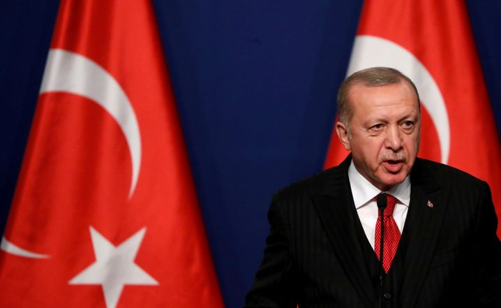 Der türkische Präsident Tayyip Erdoğan