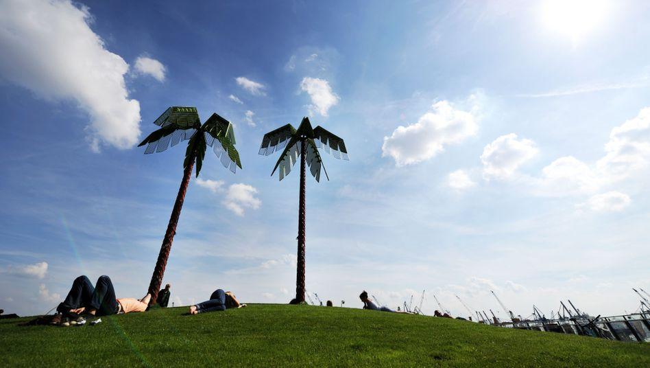 Palmenskulptur in Hamburg: Die meisten Millionäre, die wenigsten Kontrollen