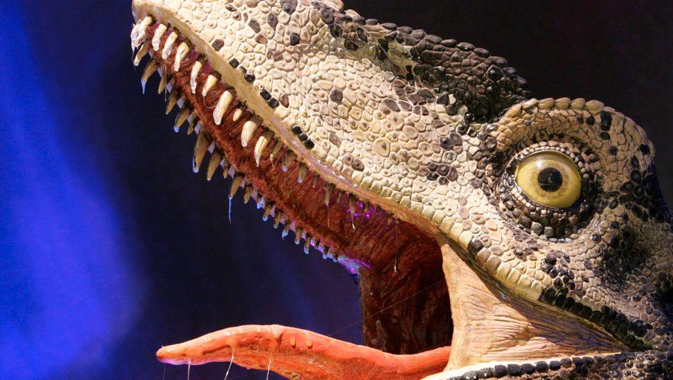 Dinosaurier-Nachbildung im Australian Museum in Sydney (Symbolbild): Streifzug durch das geschlossene Haus
