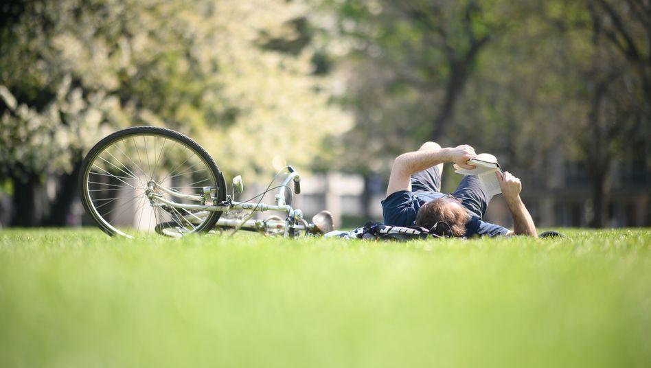 Freizeit an der frischen Luft: Ein Mann liest in einem Park in Stuttgart ein Buch