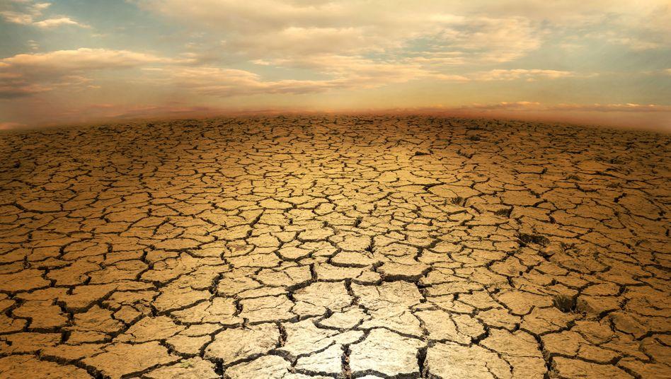 Tödliche Hitzewellen drohen laut Studie immer mehr Menschen