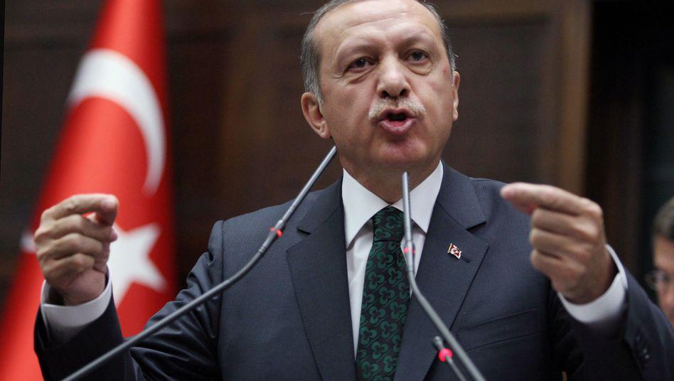 Premier Erdogan (Archiv): Kampf gegen Banden und Mafiosi?